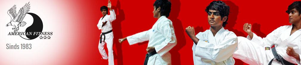 Wado kai Karate